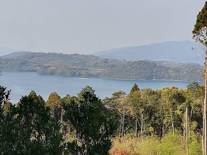 土地改良剤 地域活性